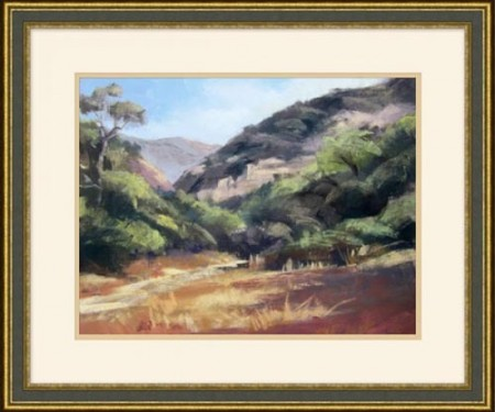 Meadow Landscape Santa Barbara