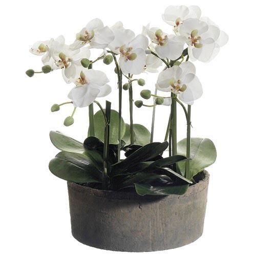 Silk Flowers & Plants