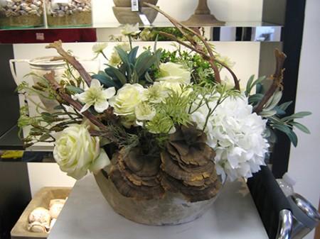 Hydrangea Rose Mushroom Santa Barbara
