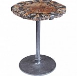 Petrified Wood Pedestal Accent Table Santa Barbara