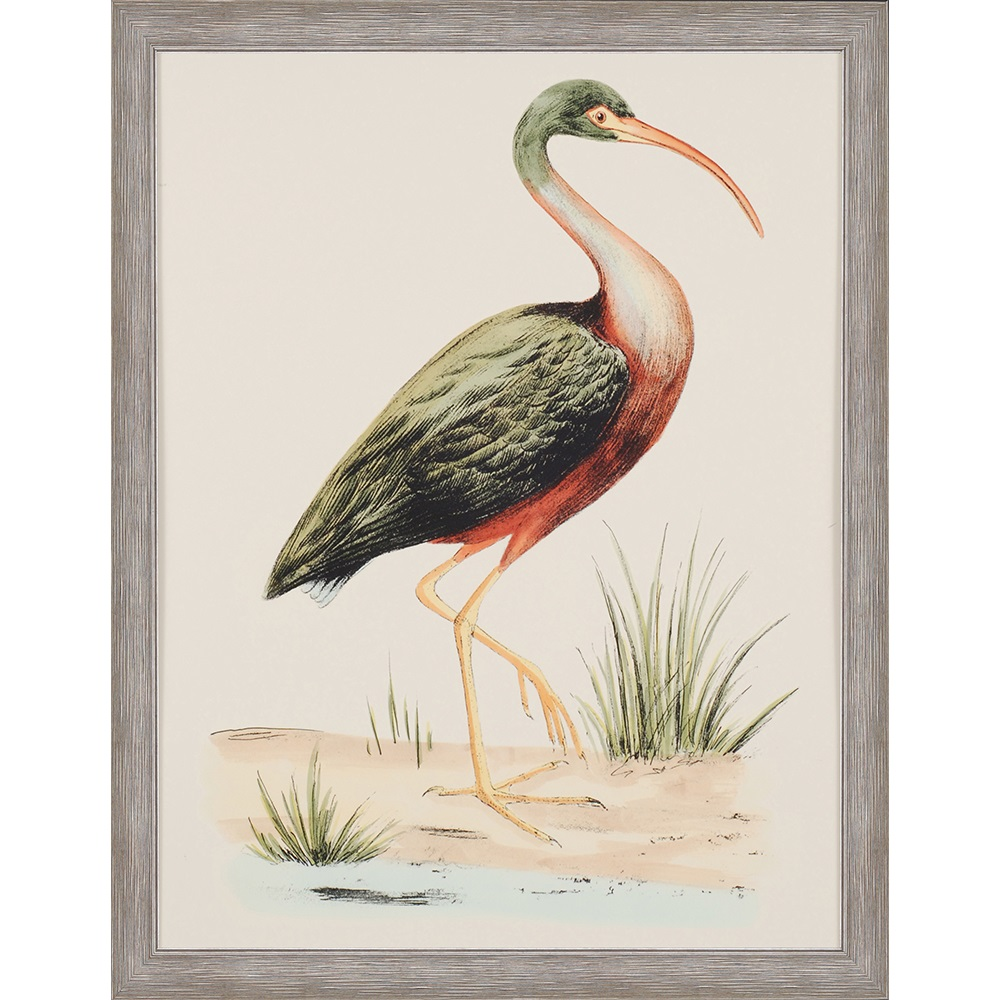 Water Bird I Painting Santa Barbara