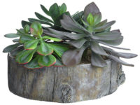 "9"" Cement Planter Green"