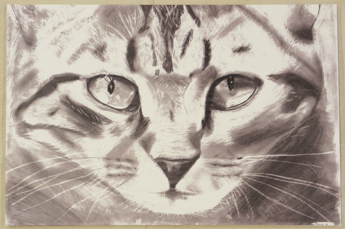 Cat By Kevin K santa barbara design center 31732-