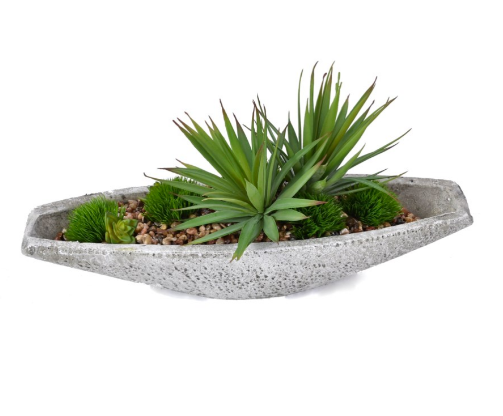 Stone Boat Succulent
