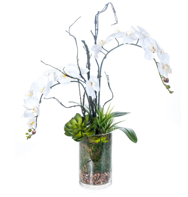 Orchid Twig Branches