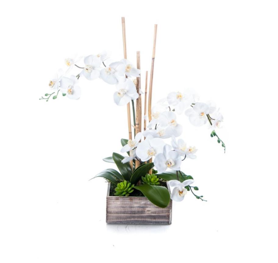 orchid in distressed box santa barbara design center accesories