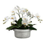 Sil Orchid Planter
