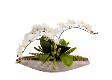 Concrete Bowl Orchid santa barbara dsign center 34021-